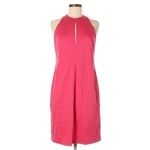 Max Mara Pink Open Back Sheath Dress